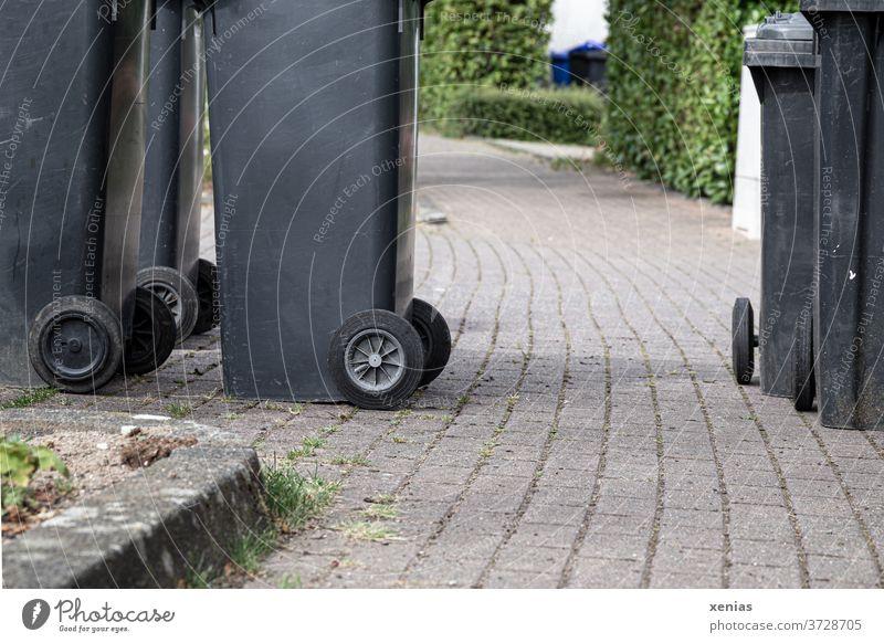 Der Mülltonnen-Weg - Schwarze Mülltonnen stehen auf dem Bürgersteig Müllbehälter Müllentsorgung Müllabfuhr Umwelt wegwerfen Wohngebiet Abfall entsorgen xenias