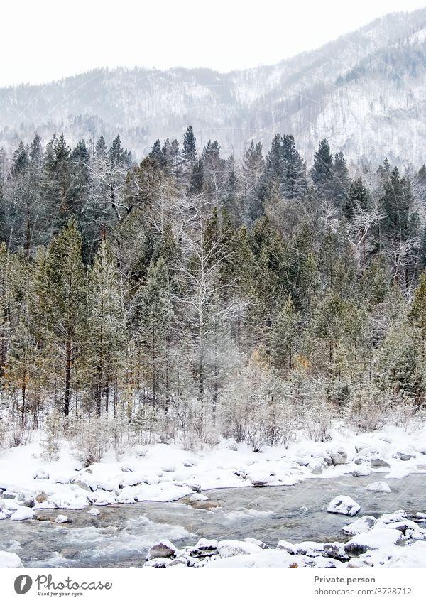 schöne winterliche Berglandschaft, Wald, Berge, Gebirgsbach, Schnee Winter Berge u. Gebirge Landschaft Wildbach malerisch Baum Fluss strömen Natur Wasser Bach