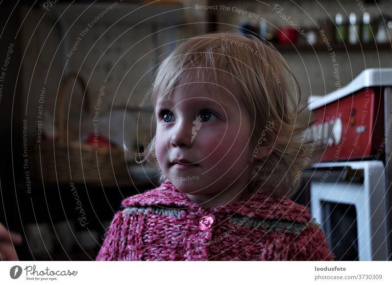 Porträt eines jungen hübschen Mädchens Auge Gesicht Nahaufnahme Behaarung blond Glück Blick Kind
