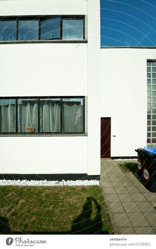 Bauhaussiedlung Dessau-Törten bauhaussiedlung dessau-törten alt antik geschichte ort sachsen-anhalt sommer stadt textfreiraum urban wohnen Bauhausstil fassade