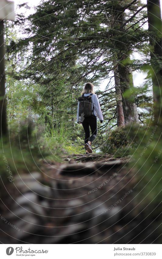 Frau mit Rucksack läuft durch den Wald auf einem Weg Wege & Pfade Waldwege steinig erdig Natur Kiefer Kiefernadeln Sträucher laub Baumstamm Äste und Zweige