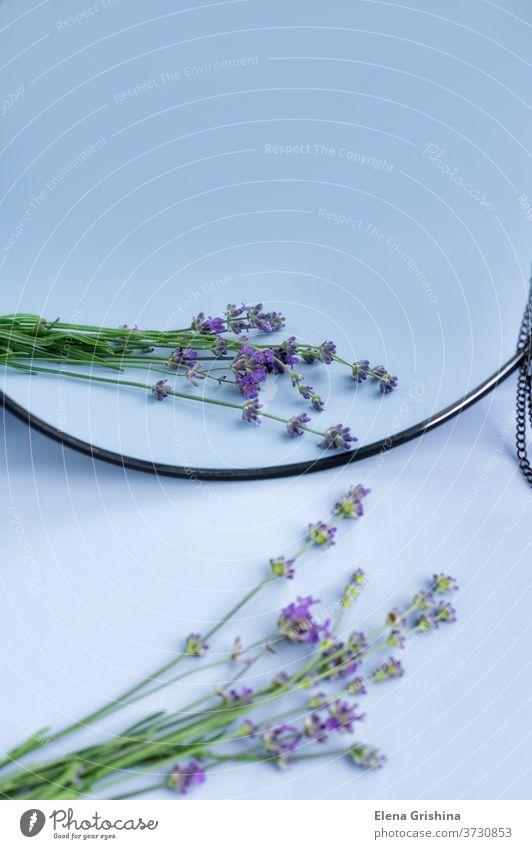 Blühender Lavendel mit Reflexion im Spiegel. Blume Reflexion & Spiegelung vertikal violette Blumen purpur geblümt Design natürlich Natur Aromatherapie Blüte