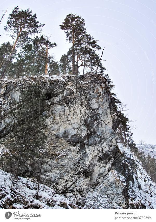 Bäume auf Felsen, Berglandschaft Felsige Klippe Berge u. Gebirge Gipfel Felsklippe Risiko Überwindung Natur keine Menschen reisen Landschaft Himmel felsig