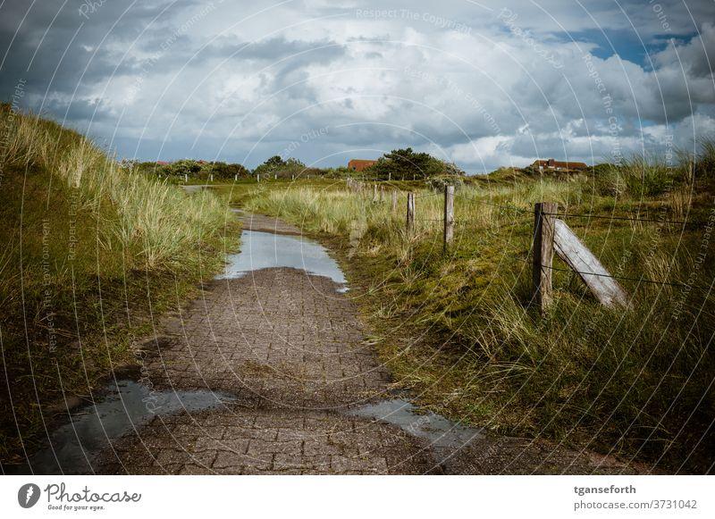 Weg auf Baltrum baltrum Dünen Nordseeinsel Sand Himmel Küste Meer Natur Insel Landschaft Dünengras Ostfriesland Ostfriesische Inseln Außenaufnahme