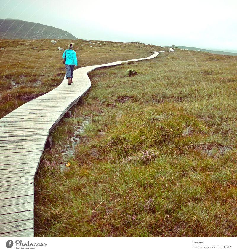 wandern Mensch Frau Natur Jugendliche Einsamkeit Landschaft Junge Frau Erwachsene Berge u. Gebirge Wiese Herbst Bewegung Wege & Pfade gehen Feld