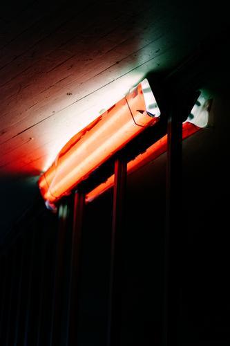 rotlicht Licht dunkel Neonlicht Lampe Nacht Beleuchtung schwarz Rotlicht Farbe leuchten Decke