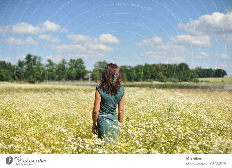 Frau im Feld feminin Mensch Erwachsene Außenaufnahme Natur Ganzkörperaufnahme Kleid grün alleine Rücken Einsamkeit schön Kamille Kamillenblüte kamillenfeld