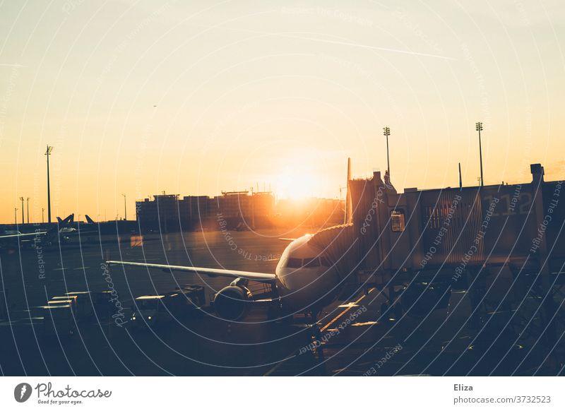 Ein Flugzeug auf dem Flughafen bei Sonnenaufgang Abfertigung Reisen Fernweh stimmungsvoll Ferien & Urlaub & Reisen Passagierflugzeug Flugplatz Tourismus