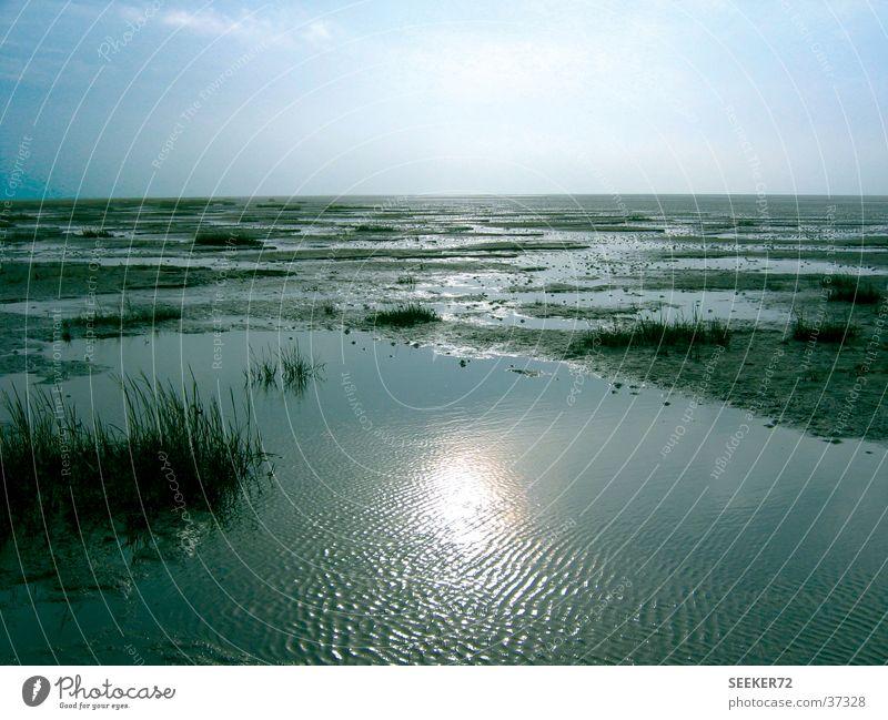 Watt Sonne Strand ruhig Einsamkeit Nordsee Wattenmeer