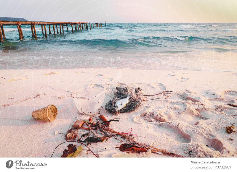 Müll und tote Fische am Strand der Insel Koh Rong, die ein beliebtes Sommerreiseziel ist und die das Ausmaß der Meeresverschmutzung, der Umweltschäden und des Plastikproblems zeigt