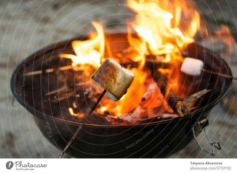 Gebratener Marshmallow am Feuer Lagerfeuer Freudenfeuer grillen süß Feuerstelle Lebensmittel Barbecue Flamme Braten Röstung Sommer kleben Abend lecker im Freien