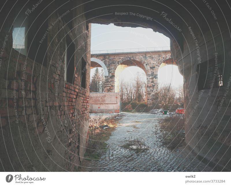 Altes Viadukt Ruine Abrissgebäude Durchblick verlassen trashig Sträucher Kopfsteinpflaster Mauer düster gefährlich Menschenleer Farbfoto Wand Bronx Tag Fenster