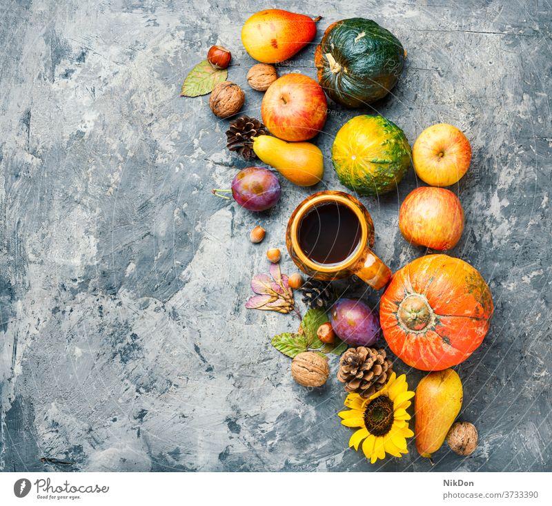 Wunderschöne Herbstkomposition Zapfen fallen Saison Hintergrund Kürbis Becher Tasse Tee trinken Sonnenblume Kopie Erwärmung Blatt Ernte saisonbedingt Gemüse
