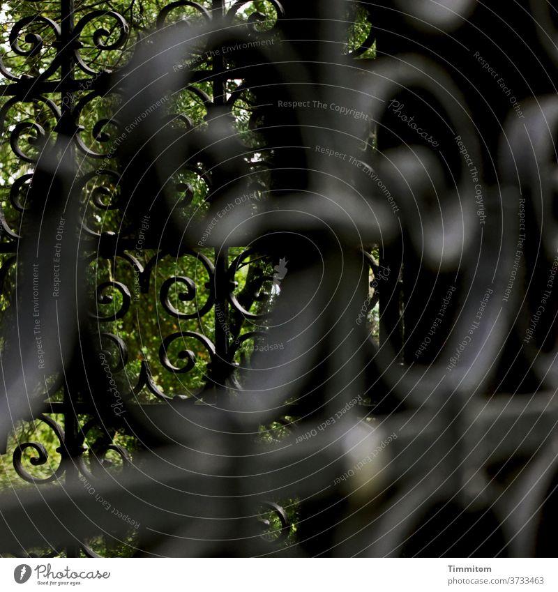 Eher unfrei - allerlei Metall und Zaun Verzierung Absperrung gesperrt Sicherheit Barriere Schutz Gitter Metallzaun Verbote Menschenleer Friedhof