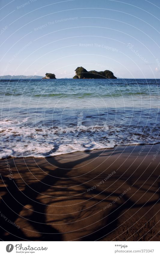 saltwater & shadows. Natur Landschaft Sand Himmel Sommer Baum Wellen Küste Strand Meer Ferien & Urlaub & Reisen Insel Traumstrand Neuseeland