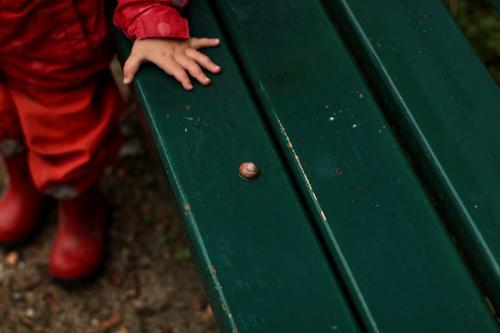 Ein Kleinkind in regenkleidung steht vor einer nassen, grünen Parkbank auf der eine Schnecke liegt. Tierliebe parkbank schnecke regenwetter tierliebe staunen