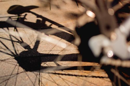 Fahrrad. Silhouette. Schatten. Sonnenlicht. Detailaufnahme Sattel Reifen Speichen glänzend Rad Verkehrsmittel Nahaufnahme Licht Metall Schwache Tiefenschärfe