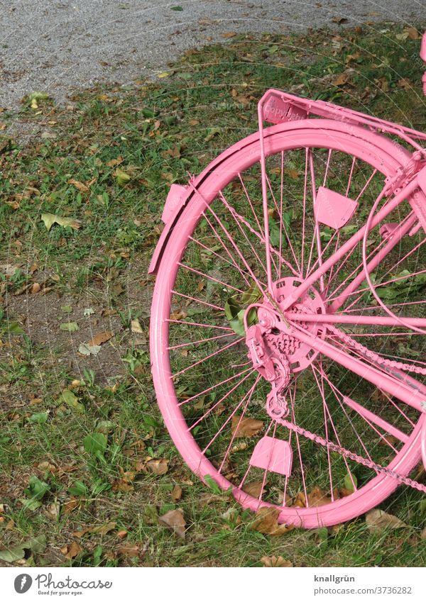 Pinker Drahtesel Fahrrad rosa Kreativität Verkehrsmittel Fahrradfahren Mobilität Außenaufnahme Tag Hinterreifen Speichen pink angemalt Freizeit & Hobby schräg
