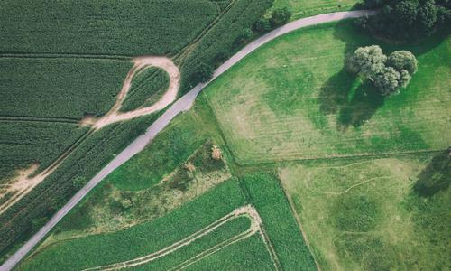Viele Wege II Luftbild Drohnen Drohnenansicht Feld Ernte Wiese Rasen Wege & Pfade Kreuzung grün Vogelperspektive kurvenreich Straße Bäume Baum Acker