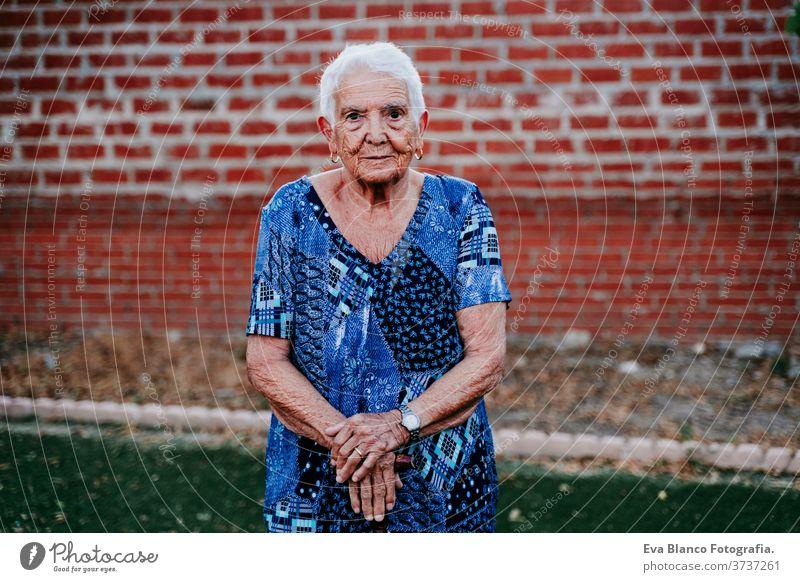 Porträt einer alten Dame in den 80er Jahren, die entspannt in die Kamera schaut Glück Lächeln Freude Frau älter heimwärts weiße Haare graue Haare mental