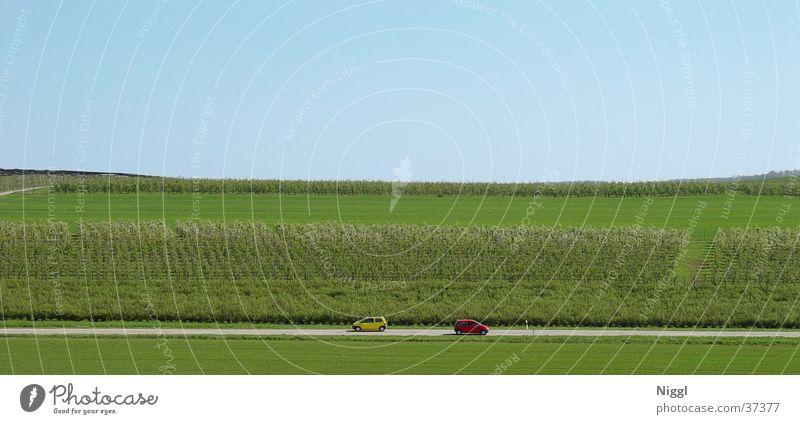 Frontal vorbei Natur grün rot gelb Straße PKW groß Verkehr Panorama (Bildformat)