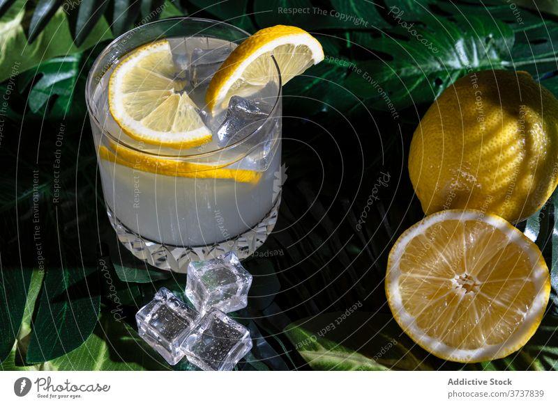 Glas Alkohol-Cocktail auf dem Tisch trinken Zitrone kalt Erfrischung Eis Würfel cool liquide Zitrusfrüchte Scheibe Bar Getränk Pub aktualisieren Frucht Saft