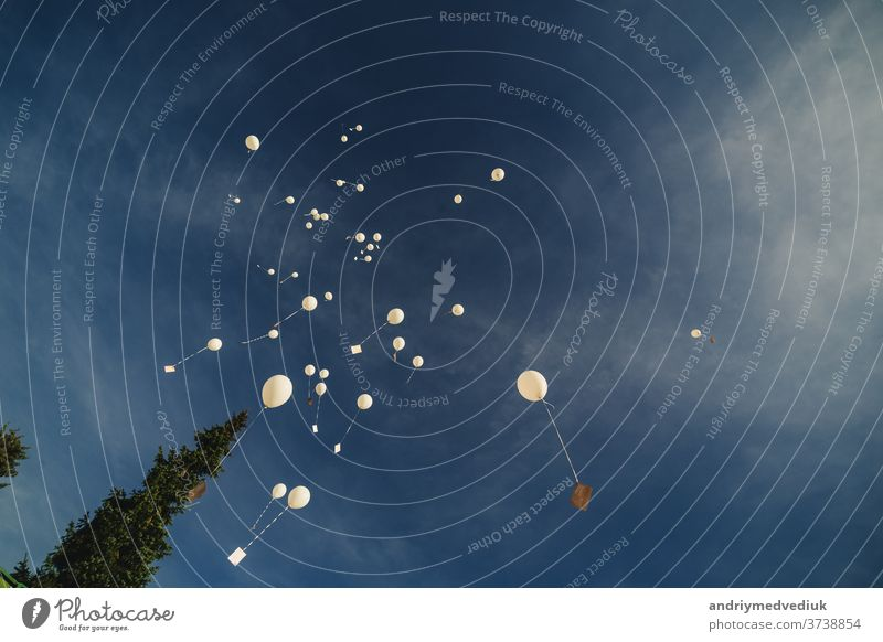 Weiße Luftballons fliegen in den blauen Himmel. Die Freisetzung festlicher Luftballons in den Wolken. Feiern und Fröhlichkeit. Luftgelkugeln in der Atmosphäre.