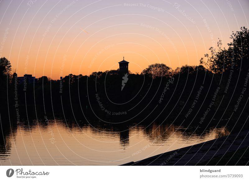 Abendstimmung am Main Sonnenuntergang Wasser Natur Flora Dämmerung Fluß Fluss Kurche Menschenleer Silhouette Idylle Kai Ufer dunkel schwarz rot orange Himmel
