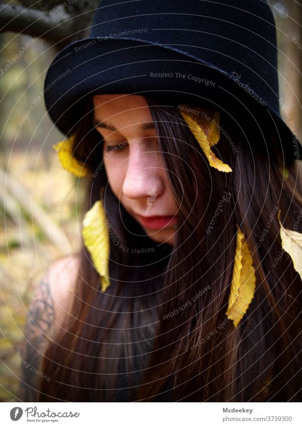 gelbe Blätter Modellierung schießen Schießen Frau Frauen weiblicher Mensch Wald schwarzes Kleid langhaarig Porträt Mädchen Schönheit schön jung hübsch attraktiv