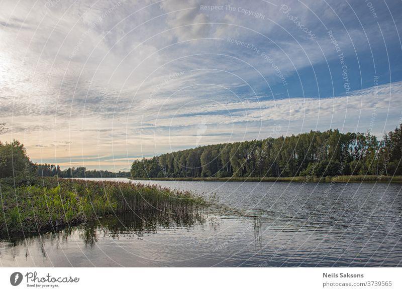 See im Wald am leicht bewölkten Nachmittag / Lettische Landschaft Wasser Himmel Natur Fluss Reflexion & Spiegelung blau Wolken Sommer Bäume Cloud Teich