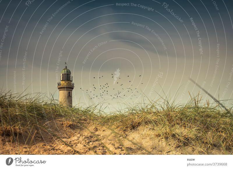Der Lütte Ferien & Urlaub & Reisen Tourismus Sightseeing Himmel Rostock Deutschland Mecklenburg-Vorpommern Warnemünder Teepott historisch Orientierung Farbfoto