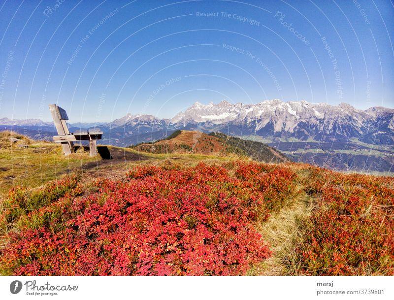 Herbst in den Bergen. Sitzbank neben rotverfärbtem Heidelbeerlaub, mit der Kulisse der Dachsteingruppe Bank Alpen Landschaft Ennstaler Alpen Natur wandern