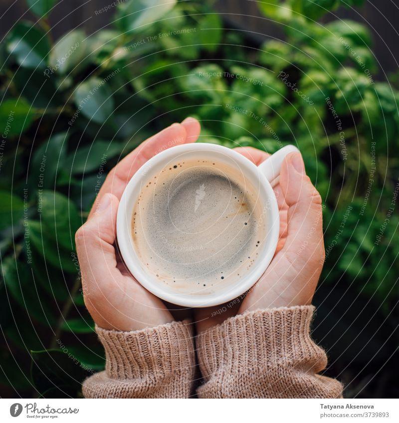 Tasse Kaffee in Händen mit Pflanzenhintergrund trinken warm Pullover gestrickt heiß Beteiligung Frau Frühstück Morgen Hand Getränk Koffein Becher schwarz