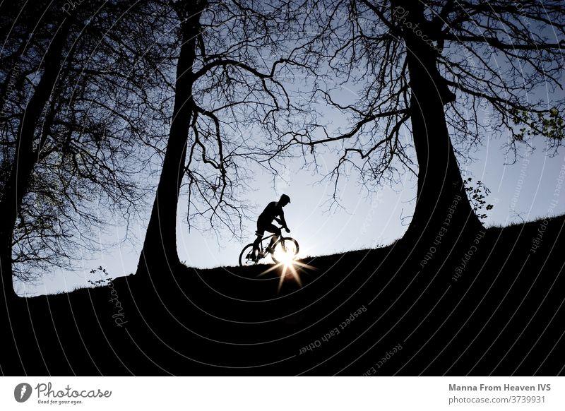 Ein Mann radelt im Sonnenuntergang auf der Spitze eines Hügels im Wald. Dunkle, nackte Bäume und abendlich blauer Himmel. Radfahren Hobby Wälder Natur Winter