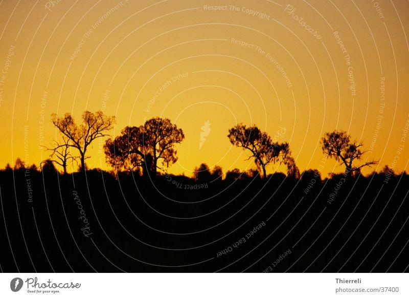 On the opposite of the Ayersrock (Uluru) Sonnenuntergang Australien Physik Abend Idylle Wärme