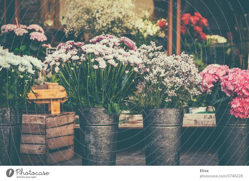 Verschiedene bunte Blumen an einem Blumenstand Blumengeschäft Frühling Vase floral Geschäft Floristik Blüten