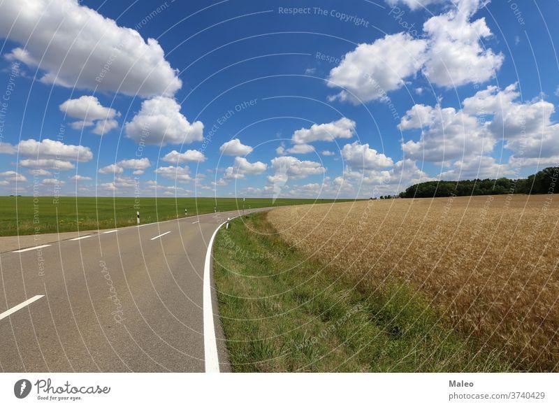Sommerlandschaft mit blauem Himmel und weißen Wolken Landschaft sonnig Natur Wolkenlandschaft Sonnenlicht Wetter Tag schön übersichtlich wolkig Licht malerisch