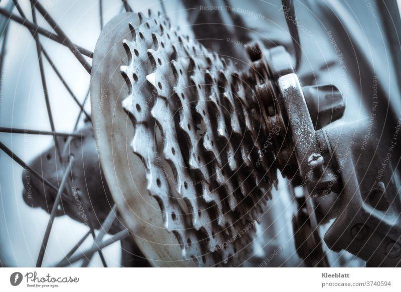 Alte Zahnräder einer Gangschaltung eines ausgedienten Fahrrades in Nahaufnahme Fahrrad, Gangschaltung, Kette, Verrostet, Zahnrad Detailaufnahme Hinterrad, Tag