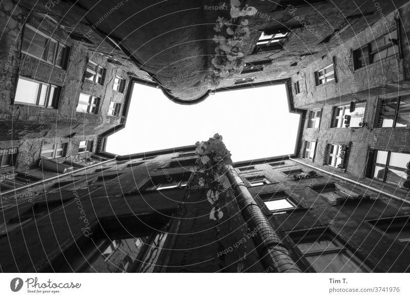 Kommst Du runter ? Berlin Mitte Hinterhof Blick nach oben Altbau Menschenleer Fenster Haus Stadtzentrum Hauptstadt Altstadt Tag Außenaufnahme Bauwerk Gebäude