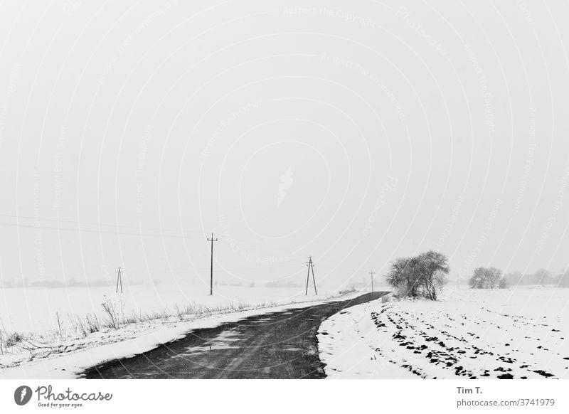 Winterstraße in Polen polska Straßenverkehr Schnee Außenaufnahme Menschenleer Verkehrswege Frost Tag kalt Autofahren Eis Wege & Pfade Natur schlechtes Wetter