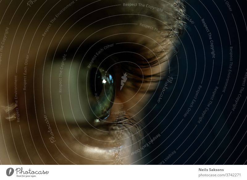 Nahaufnahme eines menschlichen Auges Wimpern menschliches Auge Mensch Blick Pupille Regenbogenhaut Augenbraue Gesicht Makroaufnahme Haut Sehvermögen blau