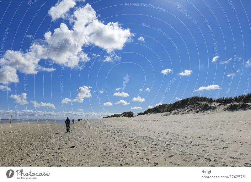 unendliche Weite - Sandstrand, Dünen und Silhuetten von Menschen unter blauem Himmel mit kleinen Wölkchen , im Hintergrund die Nordsee Strand Insel Wangerooge