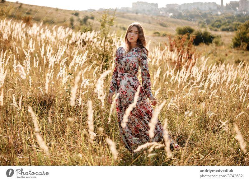 hübsche junge Frau im Kleid im Feld bei Sonnenuntergang. stilvolles romantisches Mädchen mit langen Haaren, das sich im Freien vergnügt. Sommer Schönheit Natur