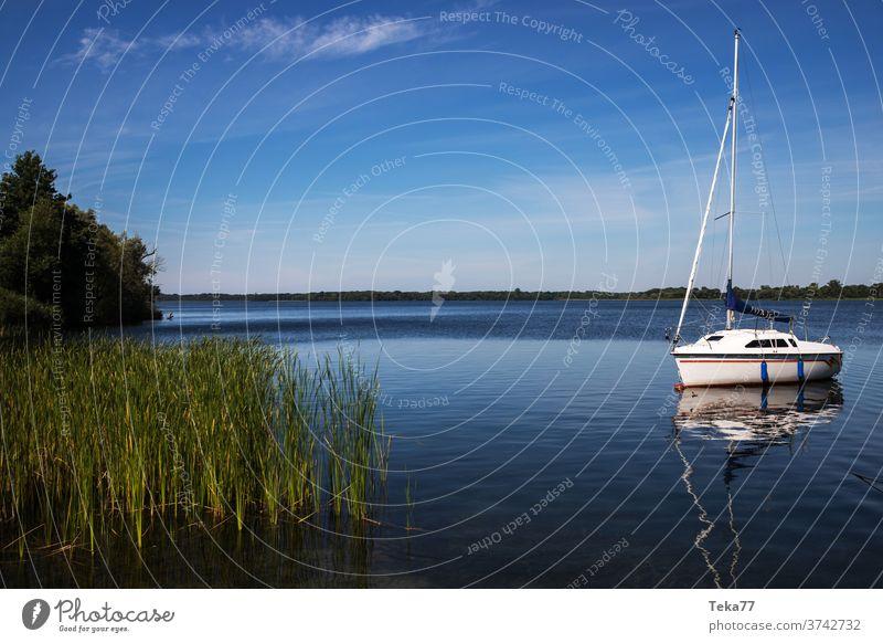 der schaalsee in deutschland im sommer schalsee Schaalsee Natur deutsche natur deutscher See Wasser Sommer Deutschland mecklenburg vorpommern Naturschutzgebiet
