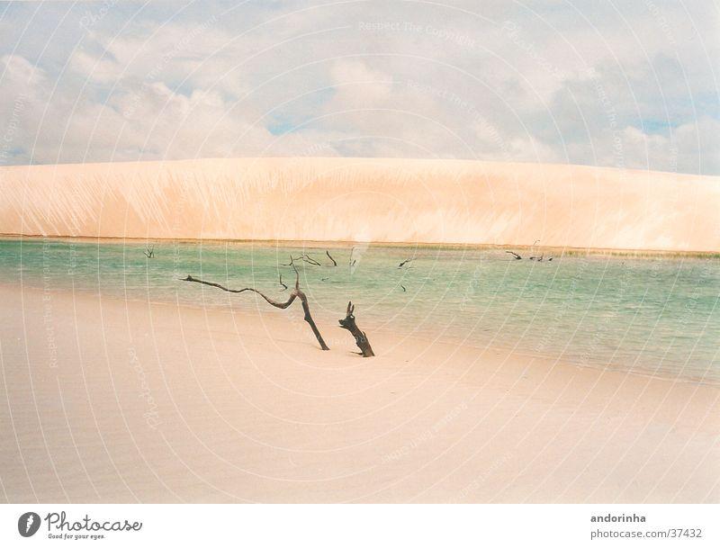 Monddüne Wasser Ferien & Urlaub & Reisen Wolken Einsamkeit Sand Ast Wüste Stranddüne Bettlaken Brasilien Lagune