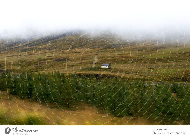 Blick aus dem fahrenden Auto auf ein einzeln stehendes Gehöft, Island Roadtrip Ringstraße Fahrt Haus einsam Landschaft Bewegung Fortbewegungsmitel grün weiß
