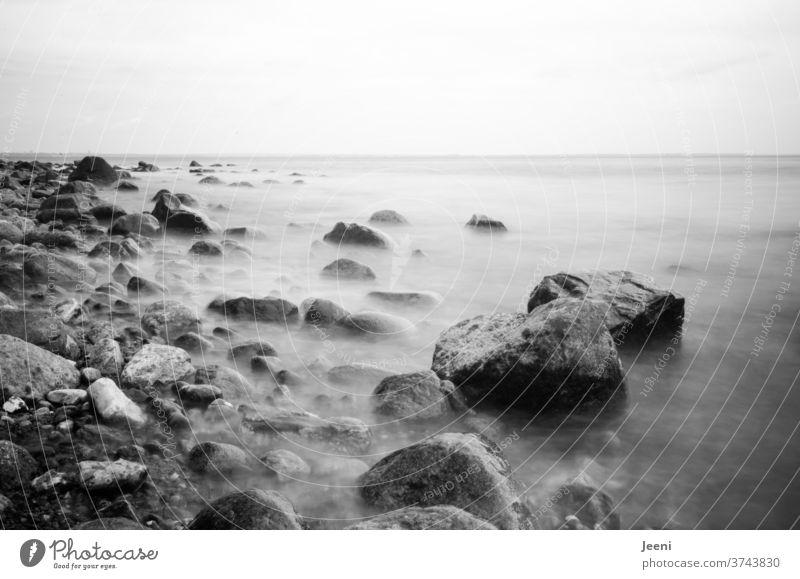 Steine im Meer Ostsee Ostseeküste Küste Wasser Steilküste Strand Steinstrand Nebel Nebelmeer Fels Felsen Ferne Traum träumen Brodten Brodtener Ufer