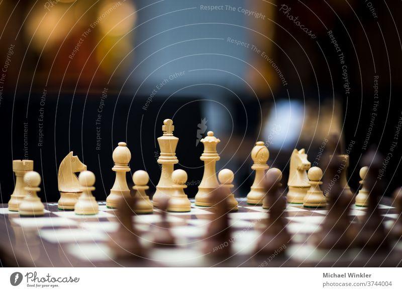 Schachbrett mit Schachfiguren und großer Tiefenschärfe Aktion Schlacht Läufer schwarz Holzplatte Business Herausforderung Konkurrenz Konzepte Konflikt