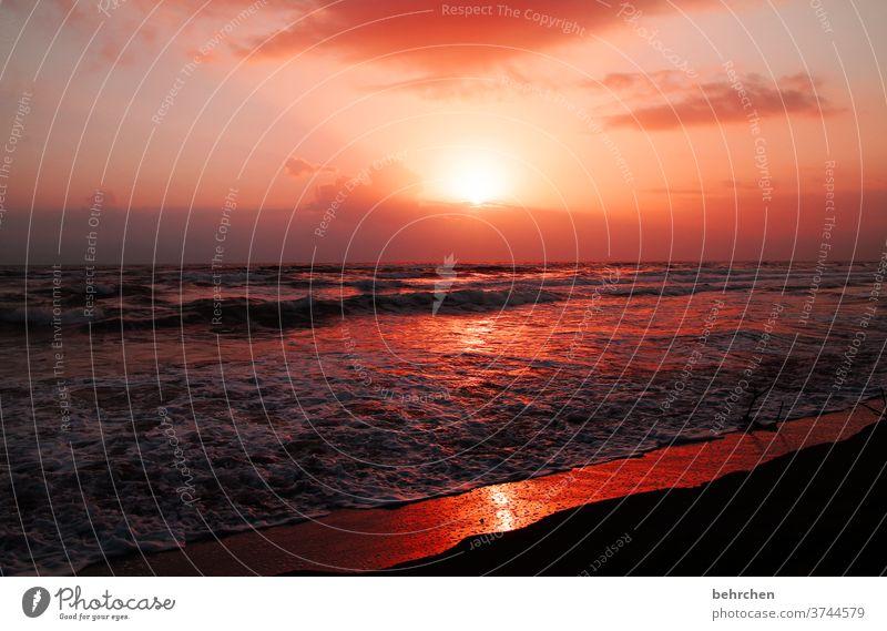 blutrot Gegenlicht Sonnenuntergang Sonnenaufgang Sonnenstrahlen Sonnenlicht Dämmerung Morgendämmerung Menschenleer Außenaufnahme Farbfoto Fernweh Sehnsucht