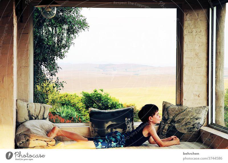 einfach mal schauen Porträt Sonnenlicht Kontrast Licht Dämmerung Abend Kissen gemütlich Sträucher Häusliches Leben Farbfoto Innenaufnahme Baum Fenster Veranda